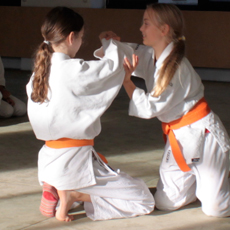 Aikido Kindertraining
